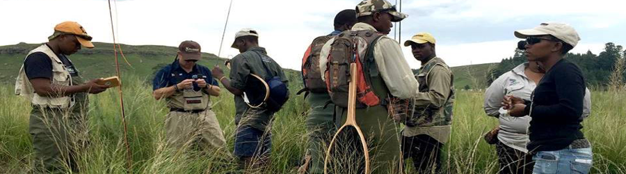 support thendela fly fishing